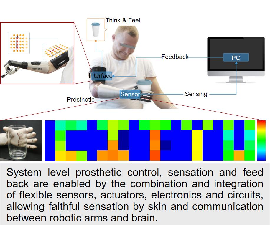 Xinge Yu Research Group – Lab of Soft Bio-Electronics